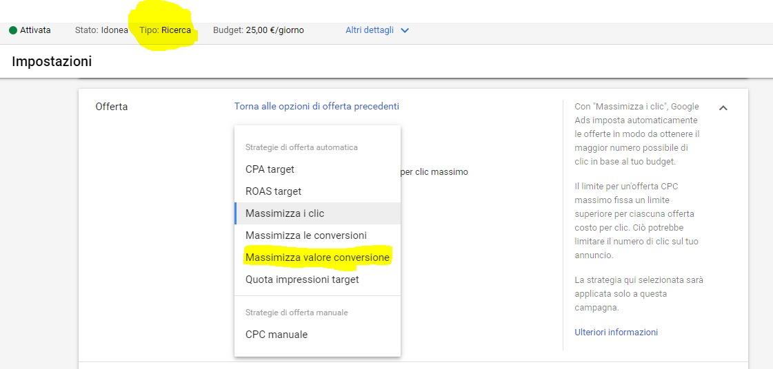 Massimizza Valore Conversioni Campagne ADS Search