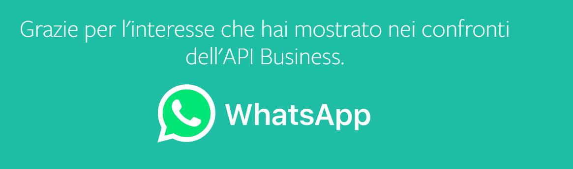 Whatsapp Business Catalogo, Pagamenti e Api key